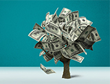 tree made of dollar bills